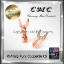 CMC หัวก้ามปู Spade Plugs C5